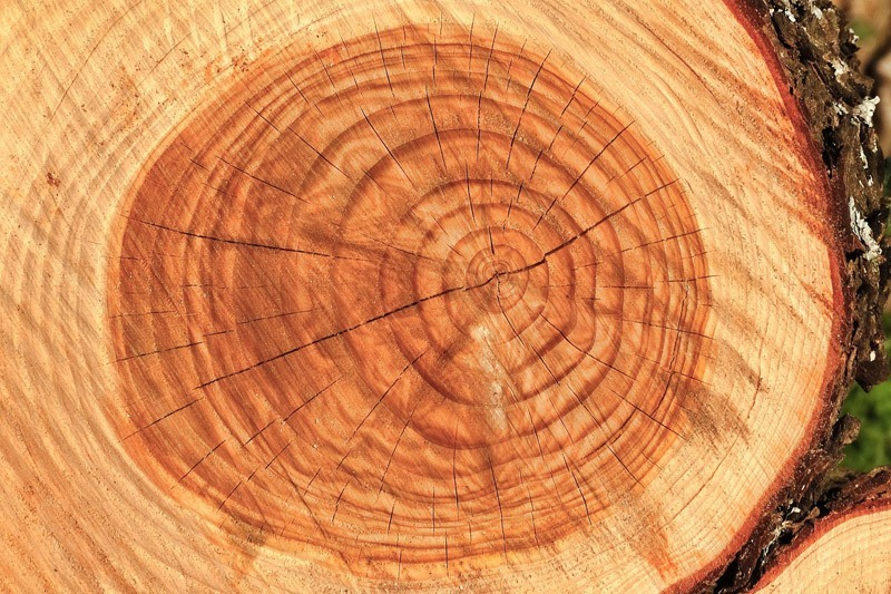 Lesena pisalna miza